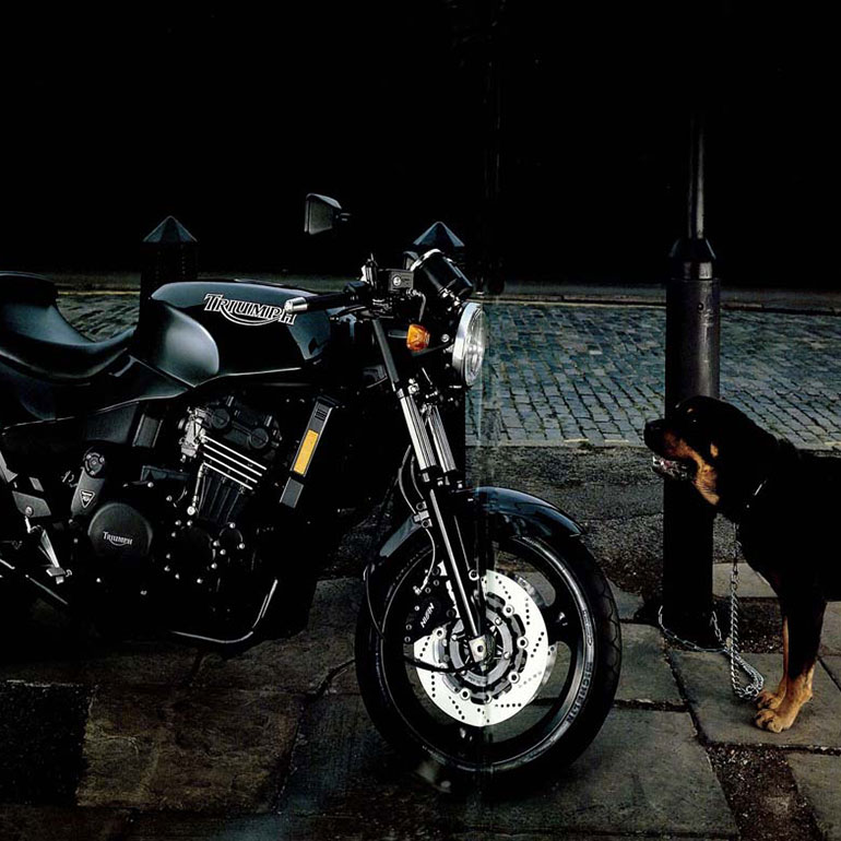Triumph Bike facing a Rottweiler