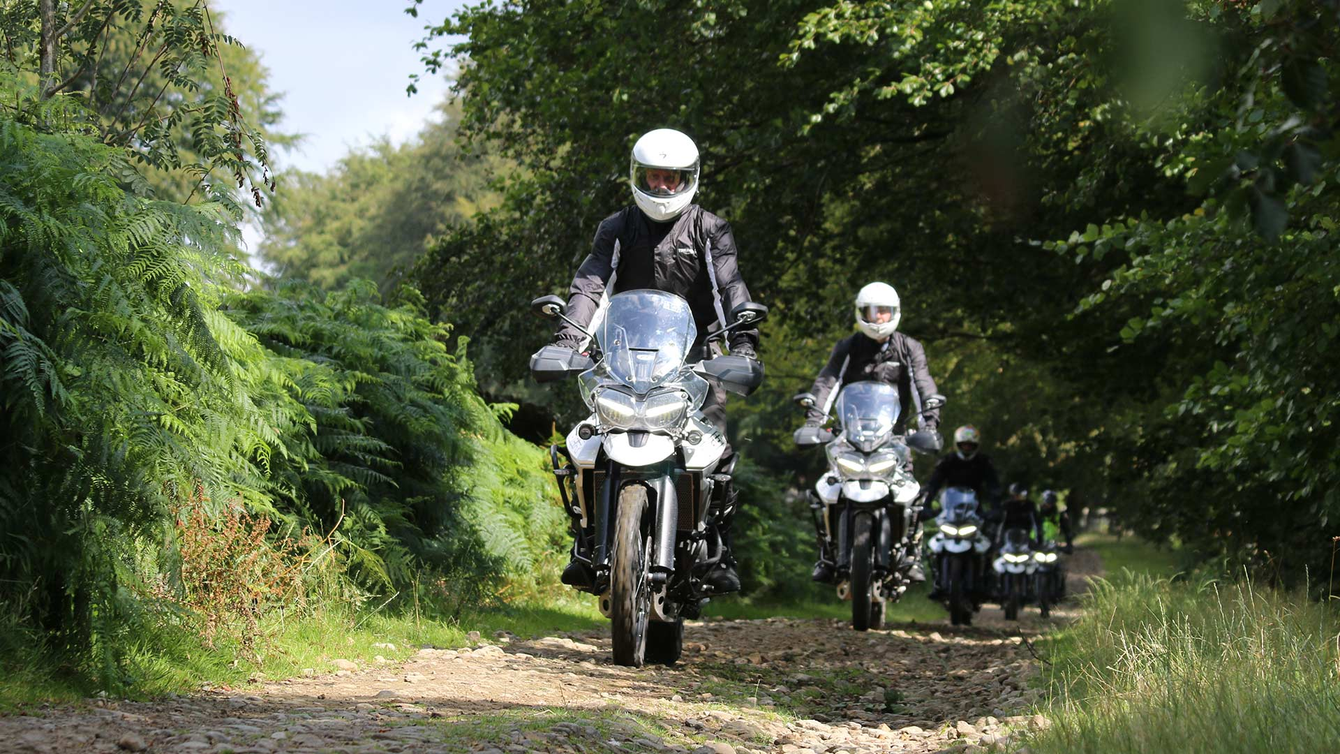 Triumph Adventure Experience Tiger day in South Wales, UK