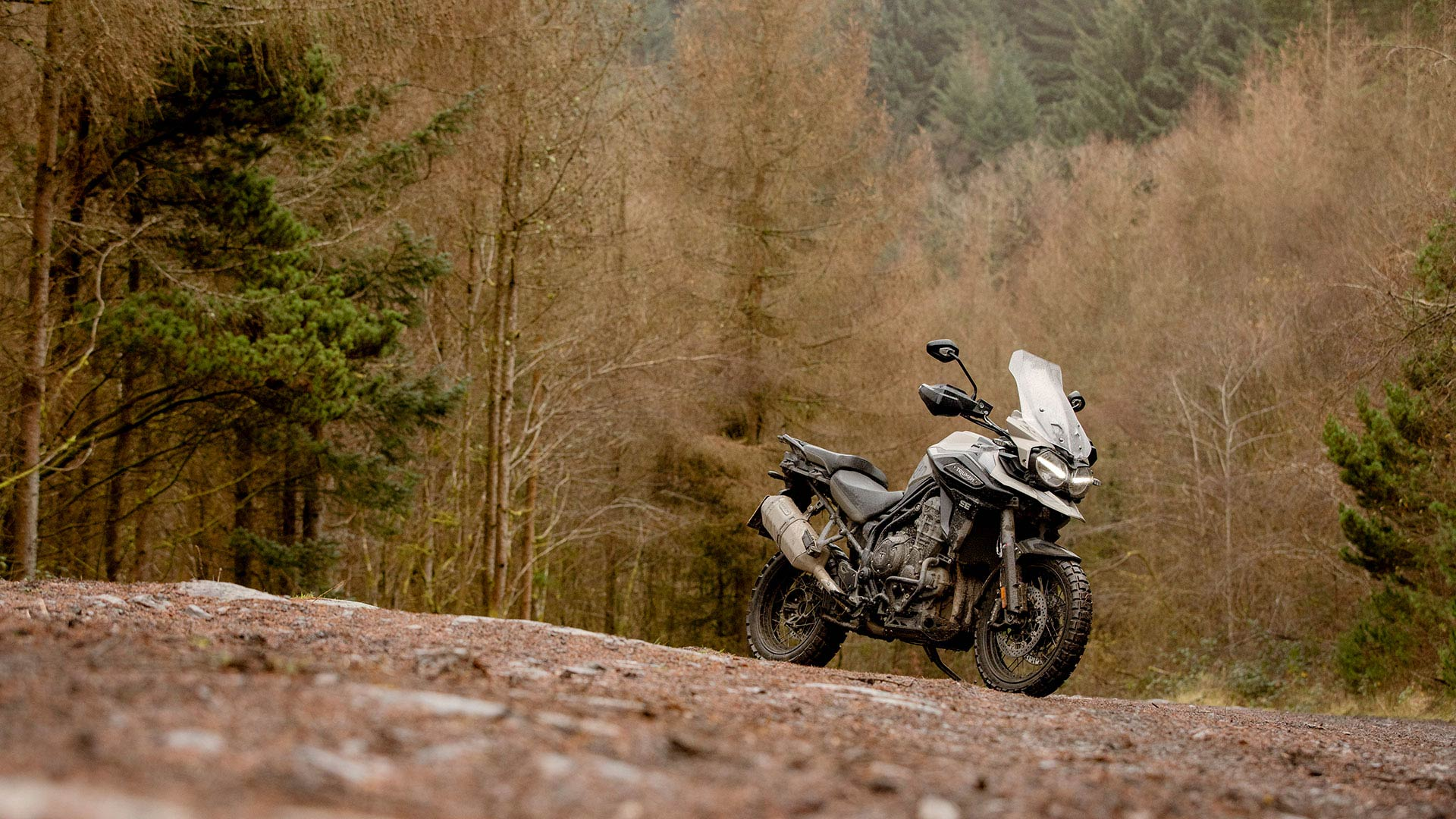 Scenic shot of the Triumph Tiger 1200 Desert in Sandstorm paint scheme